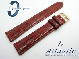 Pasek Atlantic 19 mm brązowy sprzączka w kolorze złotym