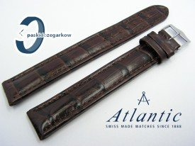 Pasek Atlantic XXL 20 mm brązowy sprzączka stalowa