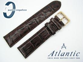 Atlantic 22 mm, brązowy, sprzączka w kolorze złotym
