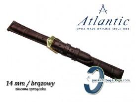 Pasek Atlantic 14mm brązowy