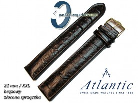 Atlantic 22mm XXL - Brązowy