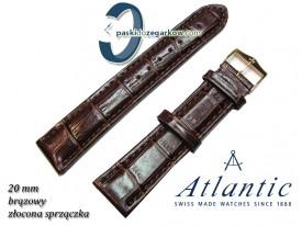 Pasek Atlantic 20mm - Brązowy - Sprzączka w kolorze złotym